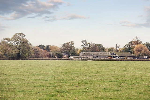 Waterperry Farm View