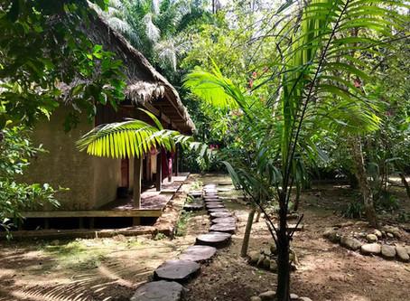A Quick Break to the Bolivian Amazon!