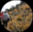 Trekking_Papallacta_3_ico.png