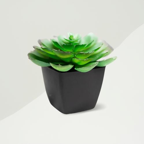 Artificial Succulent - Build Your Own Box