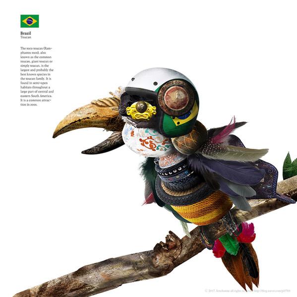 Brazil_Toucan