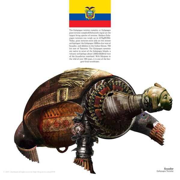 Ecuador_Galapagos Toroise