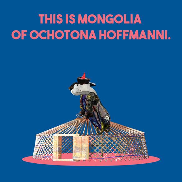 Mongolia_Ochotona hoffmanni.jpg