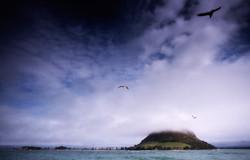 The Mount-Mount Maunganui