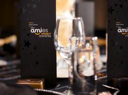 Ami 2013-Large (13).jpg