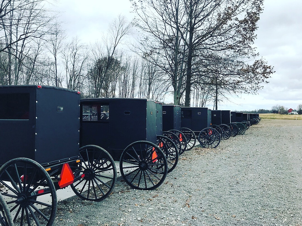 Old Order Mennonite Horse and Buggies at an Auciton