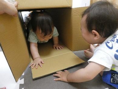お部屋にトンネル~!!!