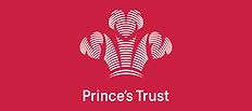 princesTrust.png