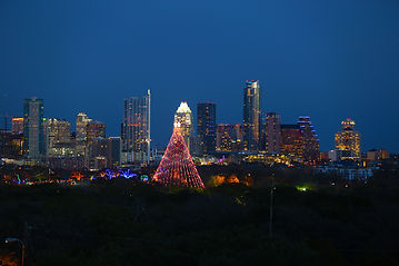 The Zilker Park tree viewed against the city skyline