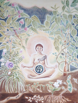 Donated to the Ayahuasca Defend Fund