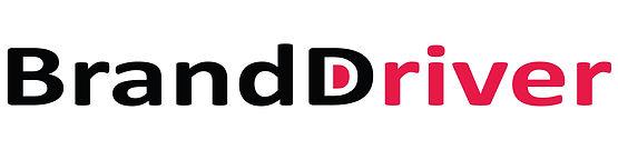 BrandDriver logo crop 500.jpg