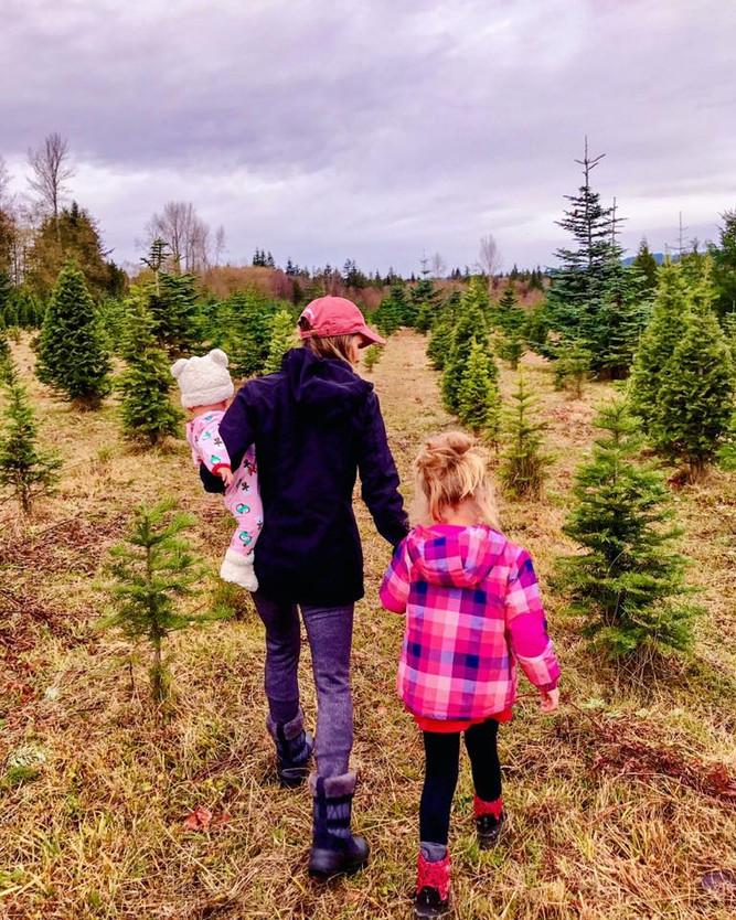 Christmas Tree...Check!
