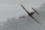 IL2-2.png