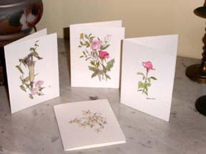 6 Cards/ 6 Envelops (1 design/ 1 each)