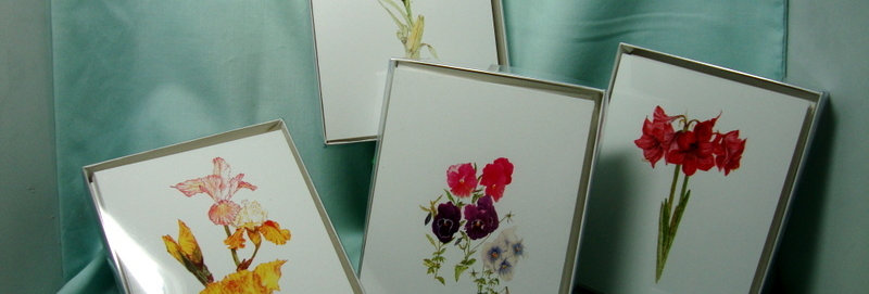 12 Box of NOTE CARDS (3 designs/4 each)