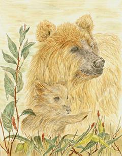 Lentz Brown Bear With Cub (jpeg).jpg