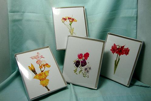 6 Cards/6 Envelops (2 designs/3 each)