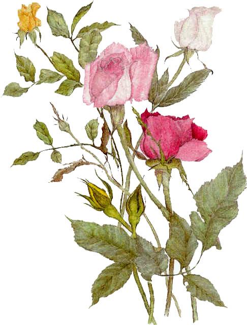 CARDS-Romance Bouquet - Copy.jpg