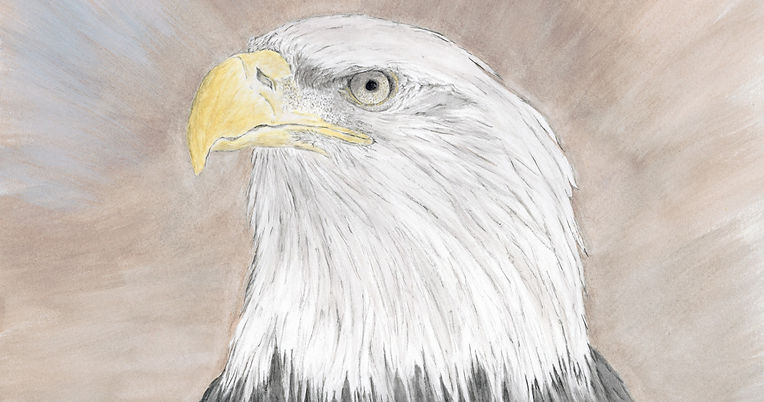 Eagle_edited_edited.jpg