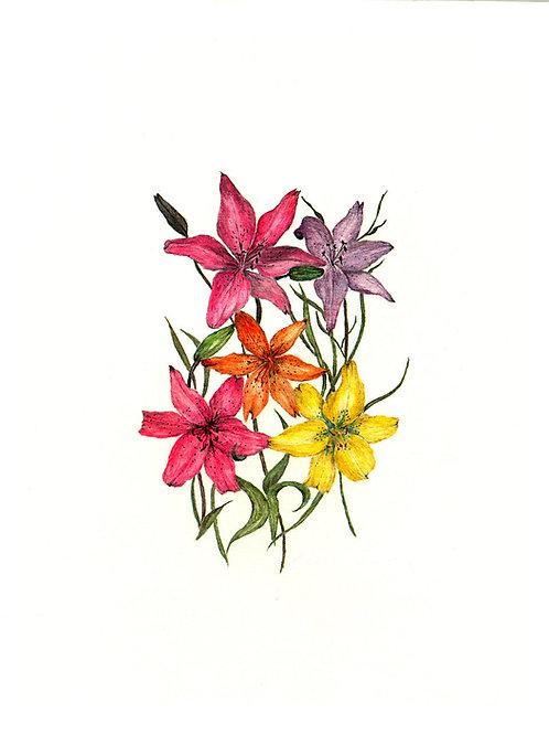 Love Lilies (BP-0009)