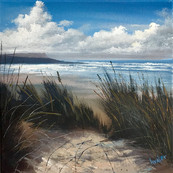 Through The Grass, Harlyn Bay