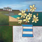 Daffodils, North Cornwall Coast