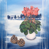 Cyclamen and Snow