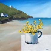 Buttercups, Cornish Cove