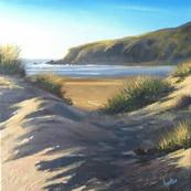 Dunes, Crantock