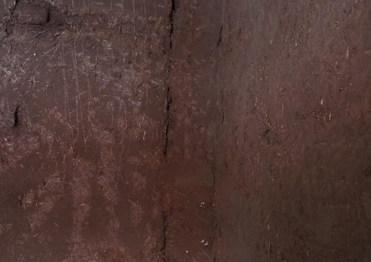 Muro sin revoque