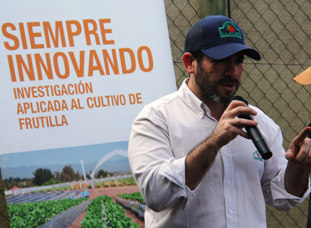 Marketing digital para la industria Agrícola.
