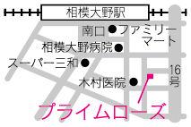 エステ相模大野地図.jpg