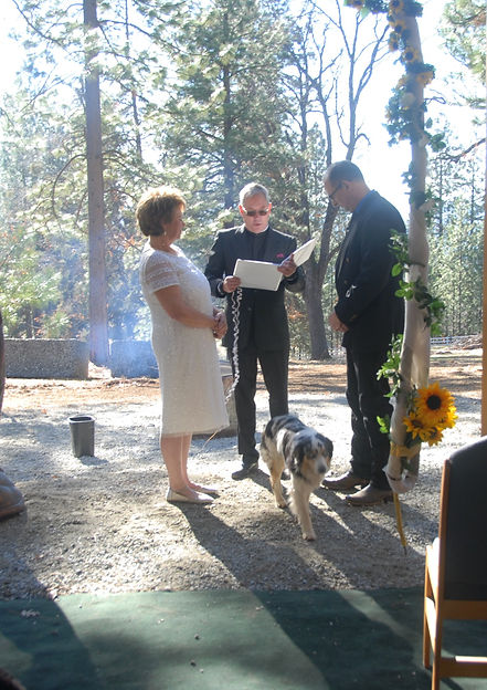 LSanders-Wedding-Camber-Hill-Officiant_e