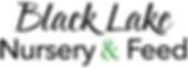 blnf-words-only-logo.png