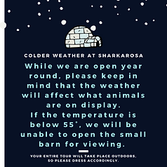 Colder weather at Sharkarosa.png