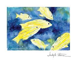 022_Yellow_Fish_web_signature.jpg