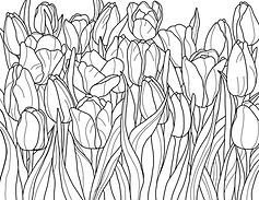 Tulip_coloring_page.jpg