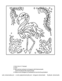 flamingo_color_square_page.png