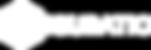 logo_figuratic_transparentwhite_3x_3x co