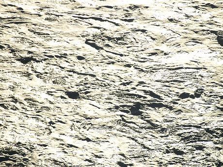 algarrobo 10-11julio leri 207.jpg