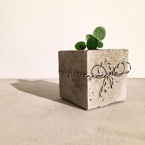 concrete pot