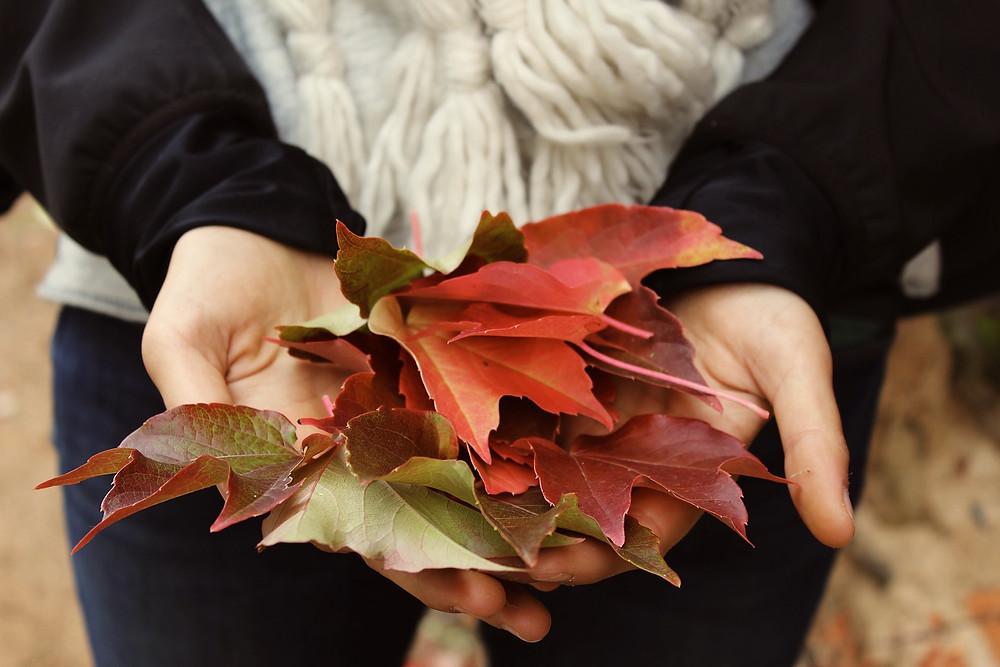 Metal Element Energy for Autumn