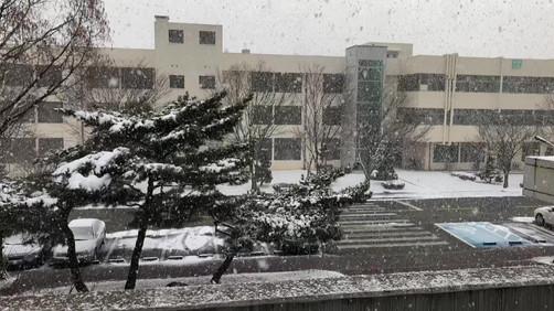 Heavy Snow at JNU Campus