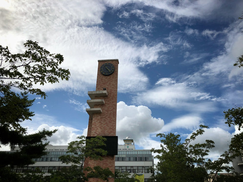 Clear sky at JNU campus