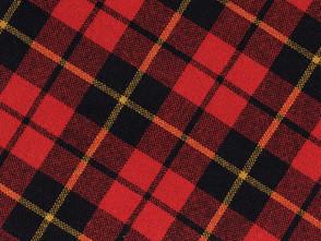 """Scottish Scott says """"Hi!"""""""