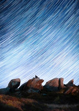 Ramshaw Star Trails.jpg