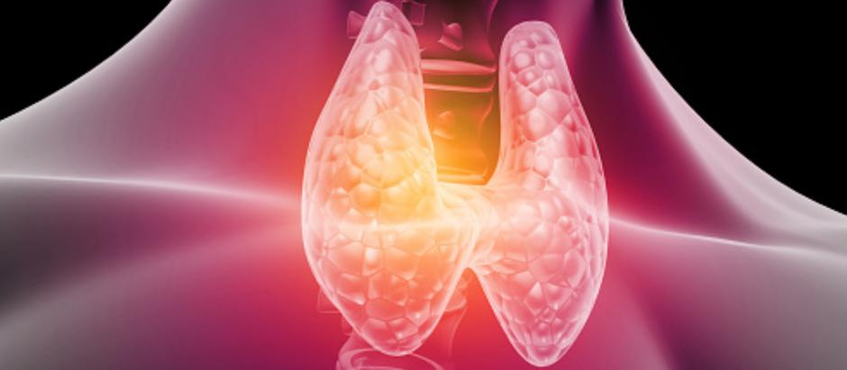 Les symptômes d'une thyroïde déréglée