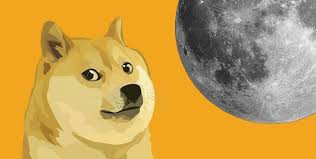 """Asked About Bitcoin, Elon Musk Just Joked He """"Only Sells Dogecoin"""""""