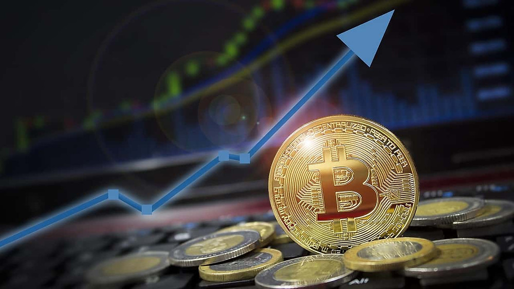 Analysts Think the Worst is Yet to Come for Altcoins as Bitcoin's Strength Grows