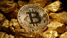 Bitcoin and Gold: Evaluating Hard-Cap Currencies in Times of Financial Crisis